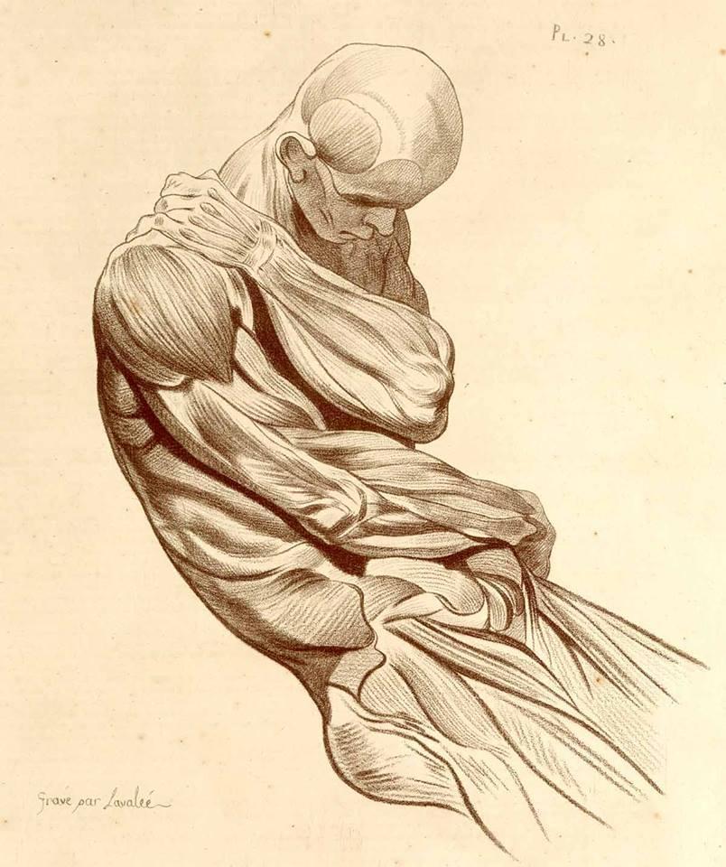 Osteokhondroz du service lombaire du stade le traitement